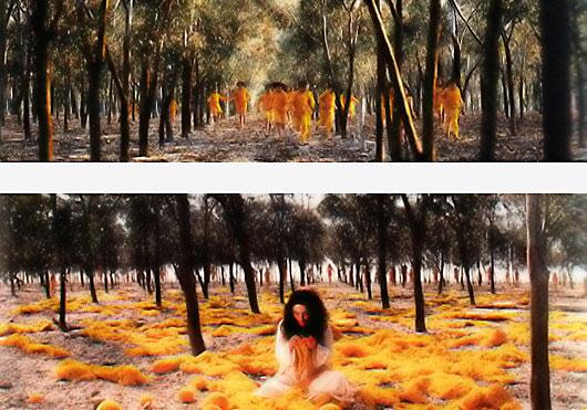 Women Without Men, 2004, Shirin Nesath, fot. Alexandra Hołownia