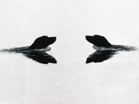 Bez tytułu, 1999, olej na płótnie, 100 x 170, wł. prywatna