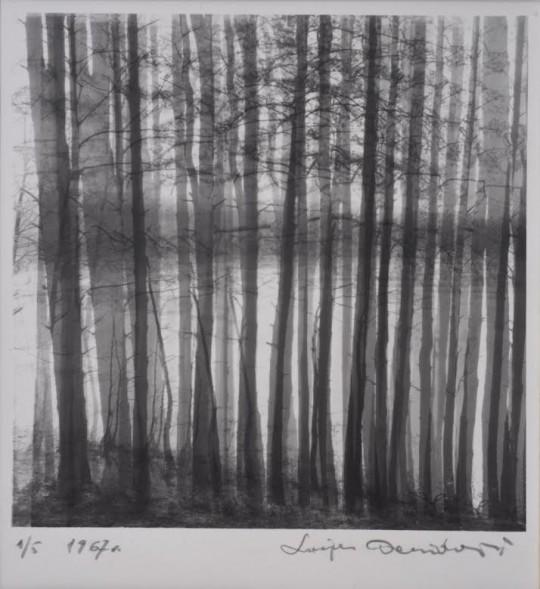 """Lucjan Demidowski, """"Drzewa"""", 1967 (źródło: dzięki uprzejmości artysty)"""