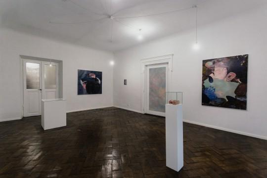 """Paulina Stasik, """"Twoje serce w moim mózgu"""", Galeria Henryk, fot. StudioFILMLOVE (źródło: materiały prasowe galerii)"""