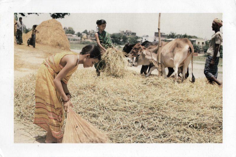 pocztówka z bangladeszu