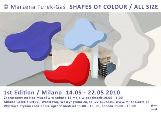 Marzena Turek-Gaś, Shapes of Colour / All Size