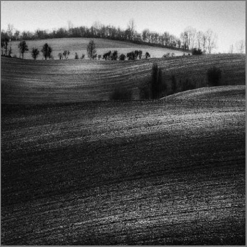 """""""Ballada bezludna"""" fot. Marek Grum"""