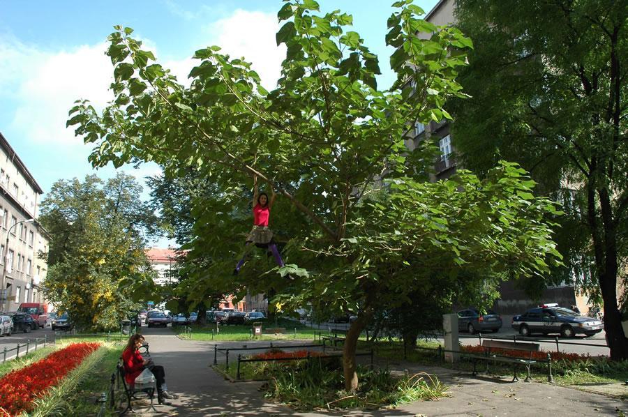 """Cecylia Malik """"365 drzew"""""""