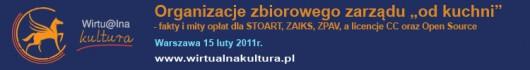 Wirtualna Kultura - banner