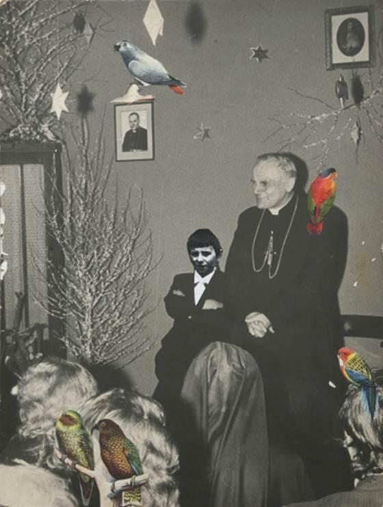 """Bogusław Bachorczyk """"Pod papugami"""" 2011, materiał udostępniony przez organizatora"""