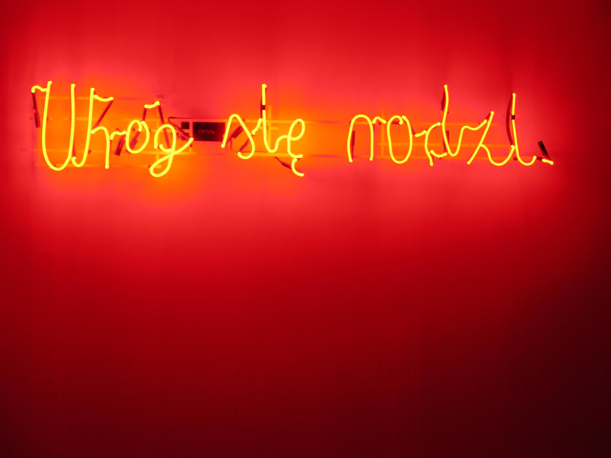 """Hubert Czerepok, """"Wróg się rodzi"""", neon, 160 x 40 cm, 2007 (dzięki uprzejmości Stowarzyszenia Zachęty Sztuki Współczesnej w Szczecinie)"""