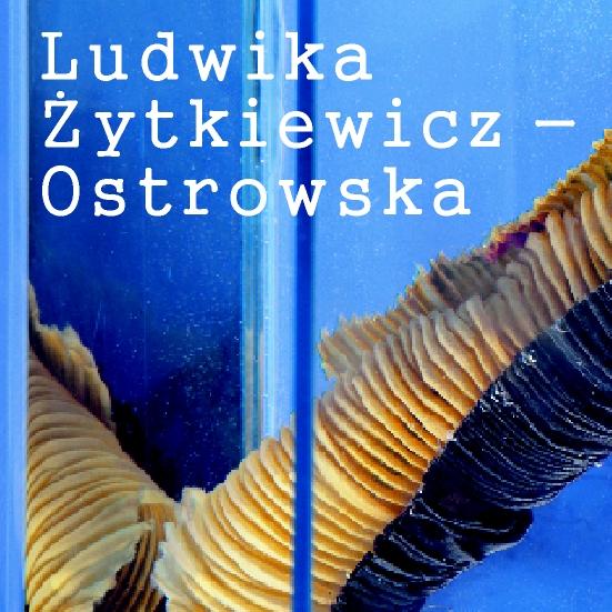 Ludwika Żytkiewicz - Ostrowska. Zatrzymana chwila. (źródło: materiały prasowe Muzeum Włókiennictwa)