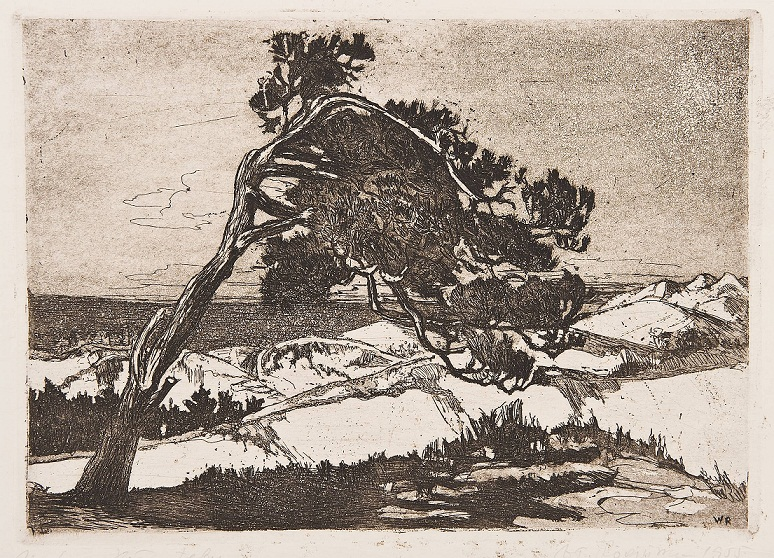 Rogińska, Wiatr od morze (źródło: materiał prasowy Muzeum)