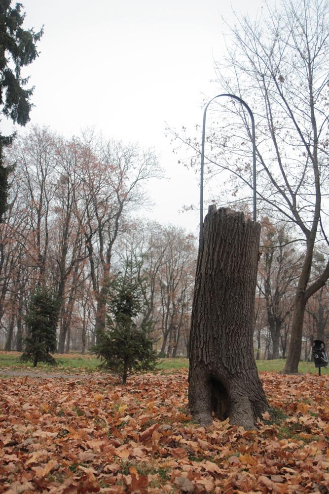 Rzeźba Krystiana Truth Czaplickiego, fot. Edyta Jaworska, Wrocław 2011 (źródło: materiał prasowy)