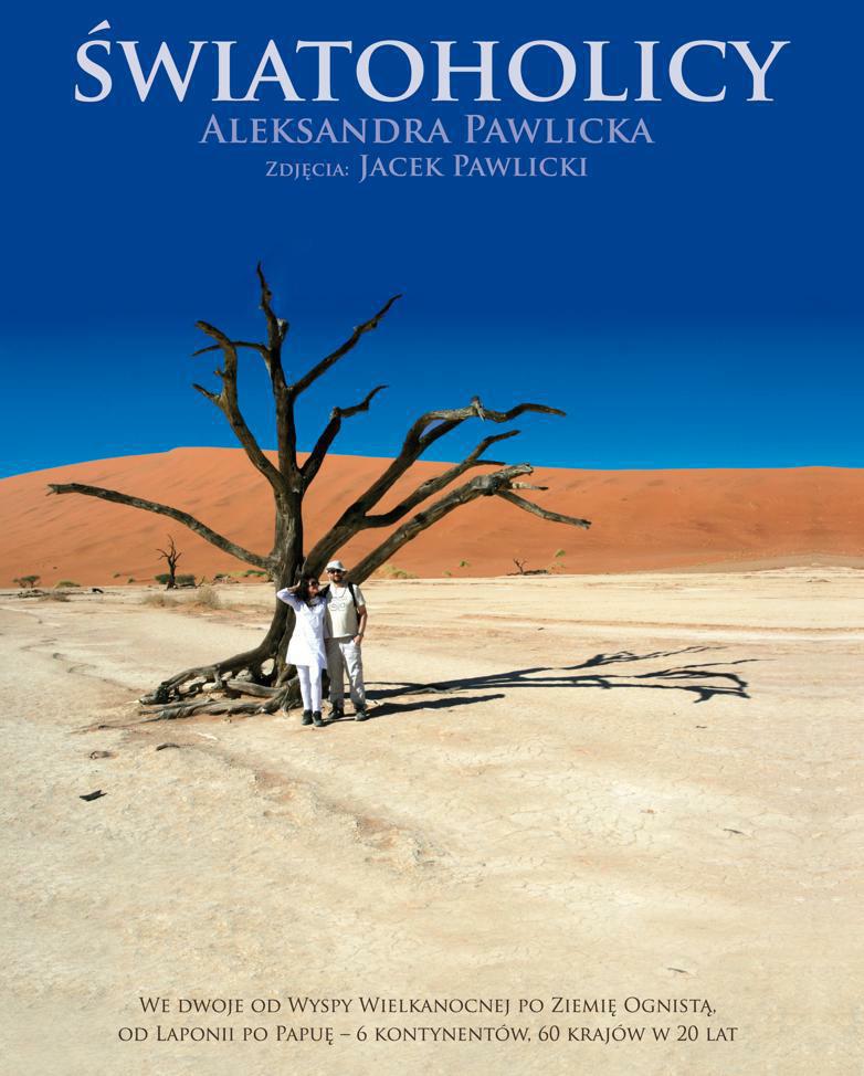 """Aleksandra Pawlicka, """"Światoholicy"""", okładka książki (źródło: materiały prasowe)"""