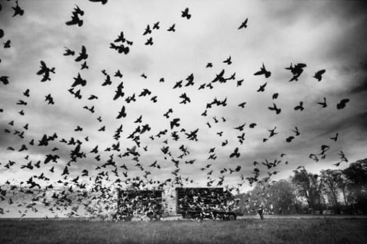 """""""Współodczuwanie - Nadzieja"""", fot. Marek Locher (źródło: materiały prasowe)"""