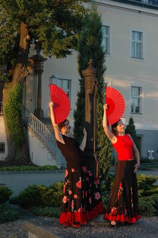 Krzyżowa 2010 (fot. Dominik Kretschmann / źródło: materiały prasowe organizatora)