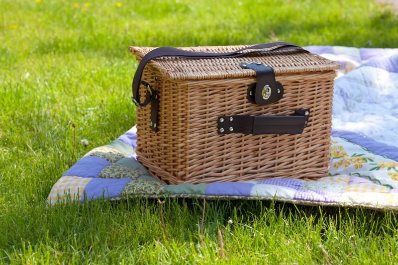 Zielony Jazdów czyli CSW na trawie (źródło: materiały prasowe)