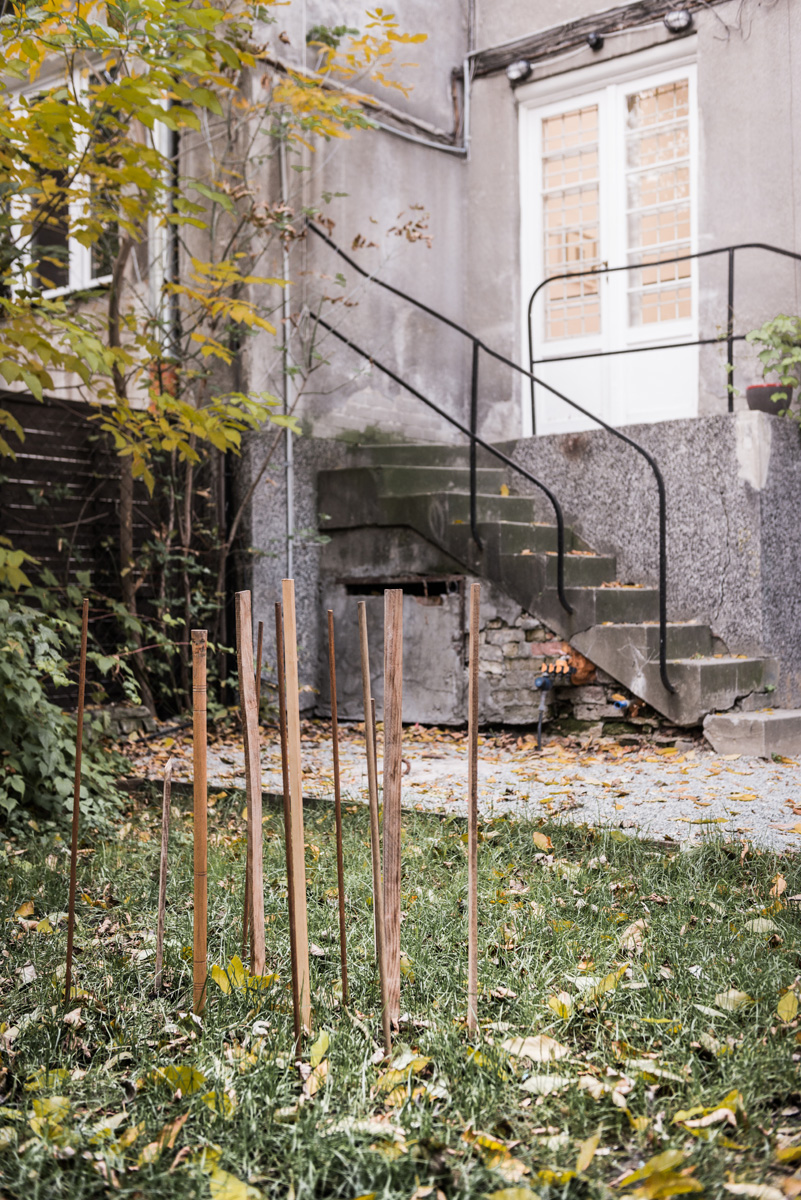Wystawa Kamy Sokolnickiej, BWA Warszawa (źródło: materiały prasowe organizatora)
