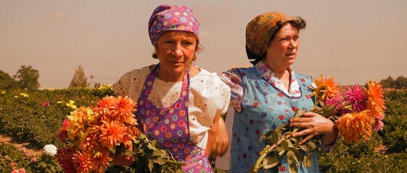 """""""Kanadyjskie sukienki"""", reż. Maciej Michalski - kadr z filmu (źródło: materiały prasowe)"""