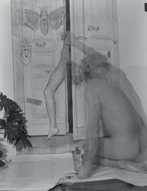Fot. Eugeniusz Józefowski (źródło: materiały prasowe organizatora)