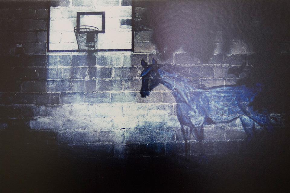 """Autor: Grzegorz Dąbrowski, praca do """"Animal Planet"""" – wystawy dzieł z kolekcji Galerii Arsenał oraz Podlaskiego Towarzystwa Zachęty Sztuk Pięknych (źródło: materiały prasowe organizatora)"""