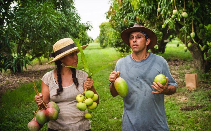 """Kadr z filmu """"Łowcy owoców"""" (źródło: materiały prasowe organizatora)"""
