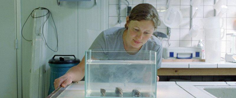 """Kadr z filmu """"Małże i miłość"""" (źródło: materiały prasowe organizatora)"""