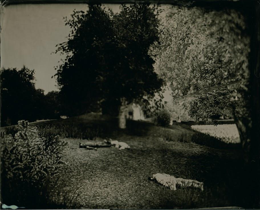 "Karl Burke, ""The Harvest of Death v.2"", 2012, Grand Prix Fotofestiwal 2013 (źródło: materiały prasowe organizatora)"
