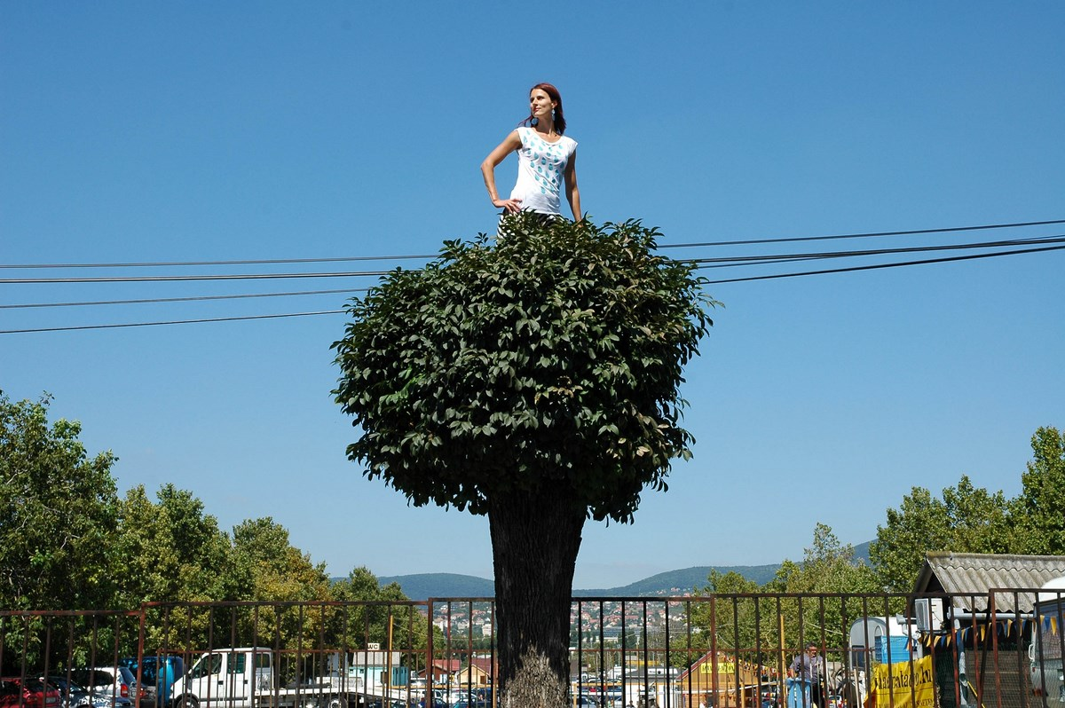 """Cecylia Malik, """"365 drzew"""", akcja artystyczna, performans w przestrzeni publicznej i fotografia, 2010, 332 Drzewo, Jesion, 22.08.2010, Pecs, własność artystki (źródło: materiały prasowe organizatora)"""