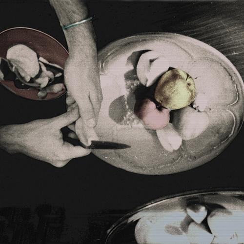 """Patrycja Dołowy, """"Widoczki – Pamięć. Miasta – Pamięć. Ciała – jabłka"""", 2008 (źródło: materiały prasowe organizatora)"""