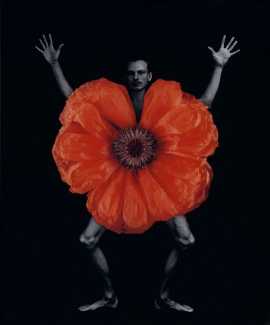 """Zofia Kulig, fotografia z cyklu """"Ogród"""", 1996-2004 (źródło: materiały prasowe organizatora)"""