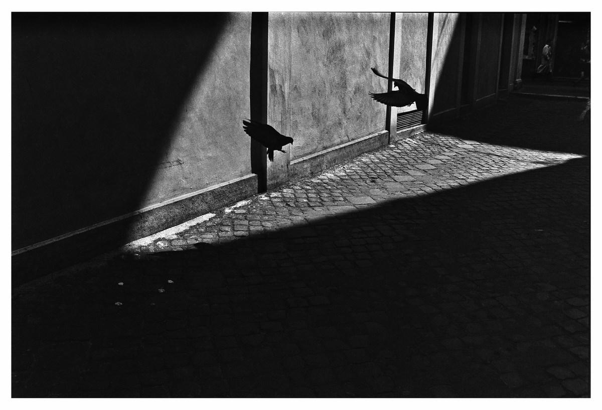 Fot. Andrzej Pilichowski-Ragno, Untitled (źródło: materiały prasowe organizatora)