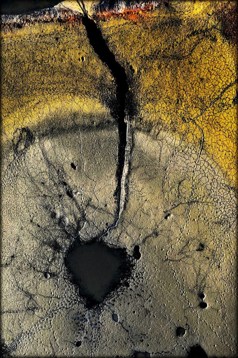 """Fot. Piotr Krupa, """"Barwy natury"""" (źródło: materiały prasowe organizatora)"""