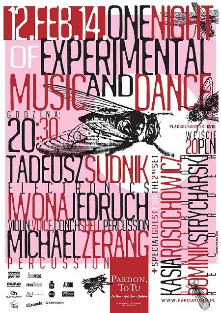 Night With Experimental Music And Dance, plakat (źródło: mat. prasowe)