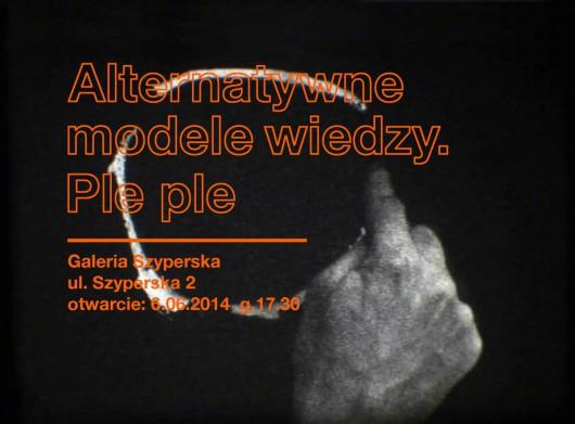 """""""Alternatywne modele wiedzy. Ple Ple"""", Galeria Szyperska w Poznaniu (źródło: materiały prasowe organizatora)"""