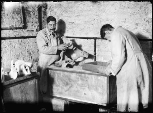 """Wiesław Rakowski, """"Archiwum Zoologiczne"""" (źródło: materiały prasowe organizatora)"""