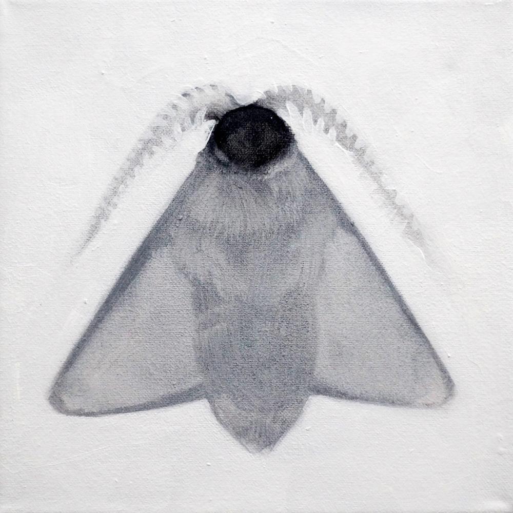 """Klaudia Ka, """"Ćma"""", 20x20 cm, olej, płótno (źródło: materiały prasowe organizatora)"""