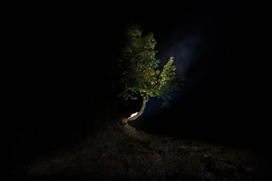 """Czekalska+Golec, """"Shelter/Schronienie"""", Tatrzański Park Narodowy 2014 (źródło: materiały prasowe organizatora)"""
