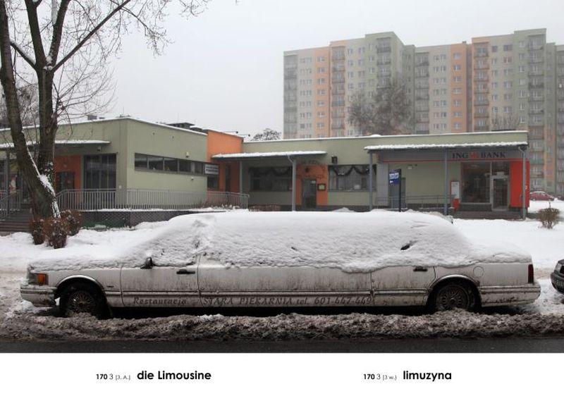 """Andrzej Tobis, """"Limuzyna"""" (źródło: materiały prasowe)"""