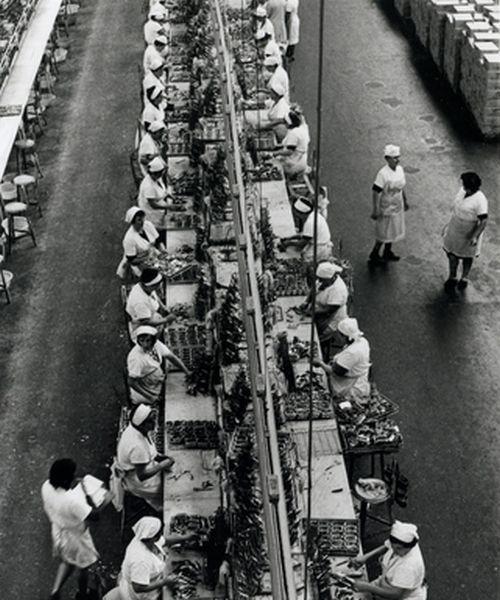 Barbara Klemm, Sardinenfabrik,Vigo.Spanien, 1973 (źródło: materiały prasowe)