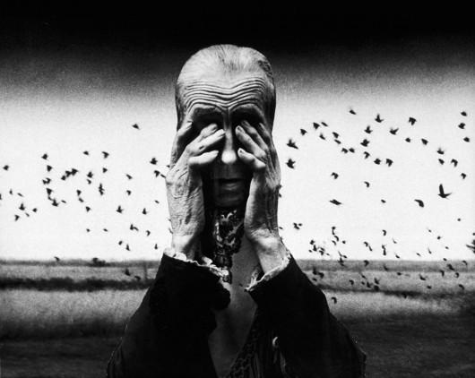 """Wystawa """"Fotografie Zofii Rydet"""" (źródło: materiały prasowe organizatora)"""