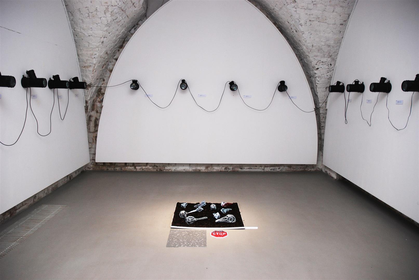 """Miłosz Flis, """"Kapsuły"""", instalacja (źródło: materiały prasowe organizatora)"""
