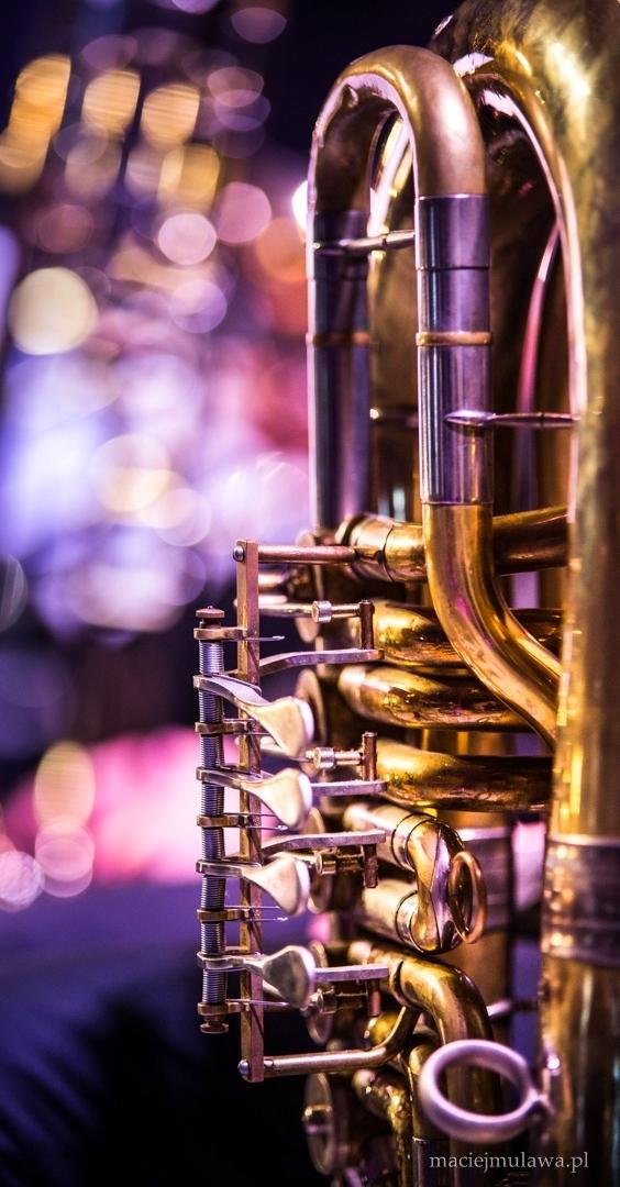 """""""Dzikie instrumenty"""" w Eksperymentalnej Pracowni Muzycznej STAYnia (źródło: materiały prasowe organizatora)"""