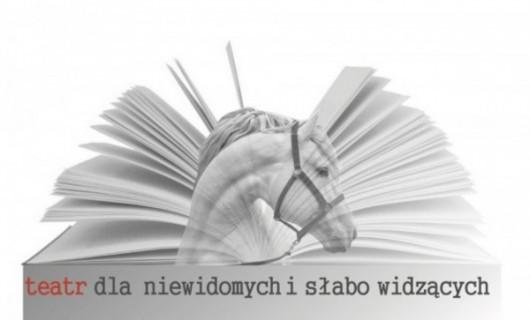 """""""Żona potrzebna od zaraz"""", reż. Ewa Pilawska (źródło: materiały prasowe organizatora)"""