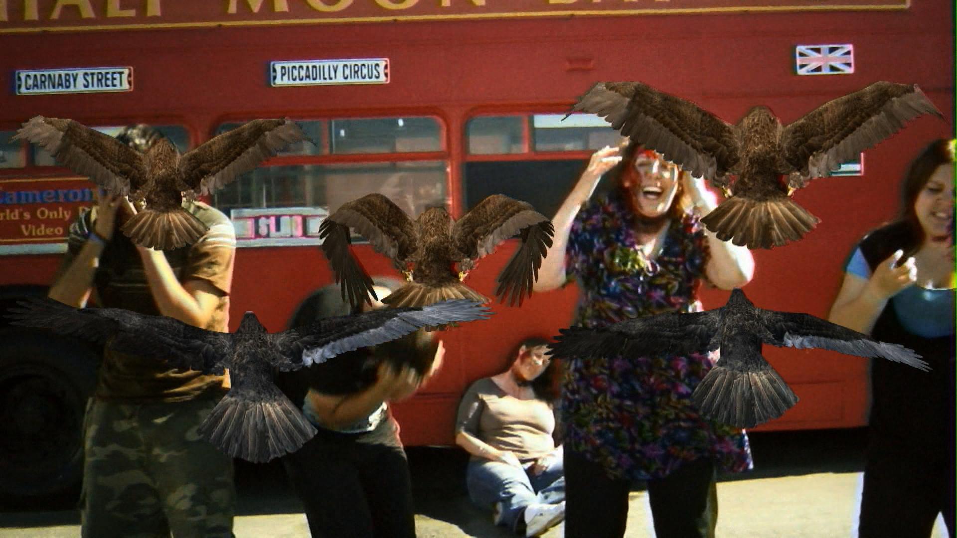 """Ptakodemia"" – kadr filmu (źródło: materiały prasowe organizatora)"