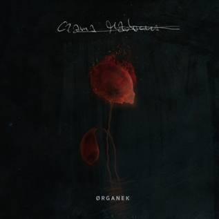 """Ørganek, """"Czarna Madonna"""" – okładka płyty (źródło: materiały prasowe wydawcy)"""