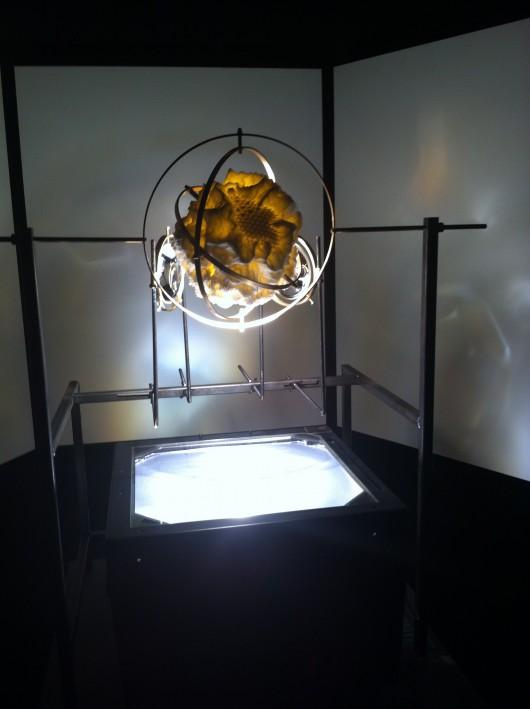 "Michael Bruk, Ann Katrin Krenz, ""Kepler's Dream"", 2014 (źródło: materiały prasowe organizatora)"