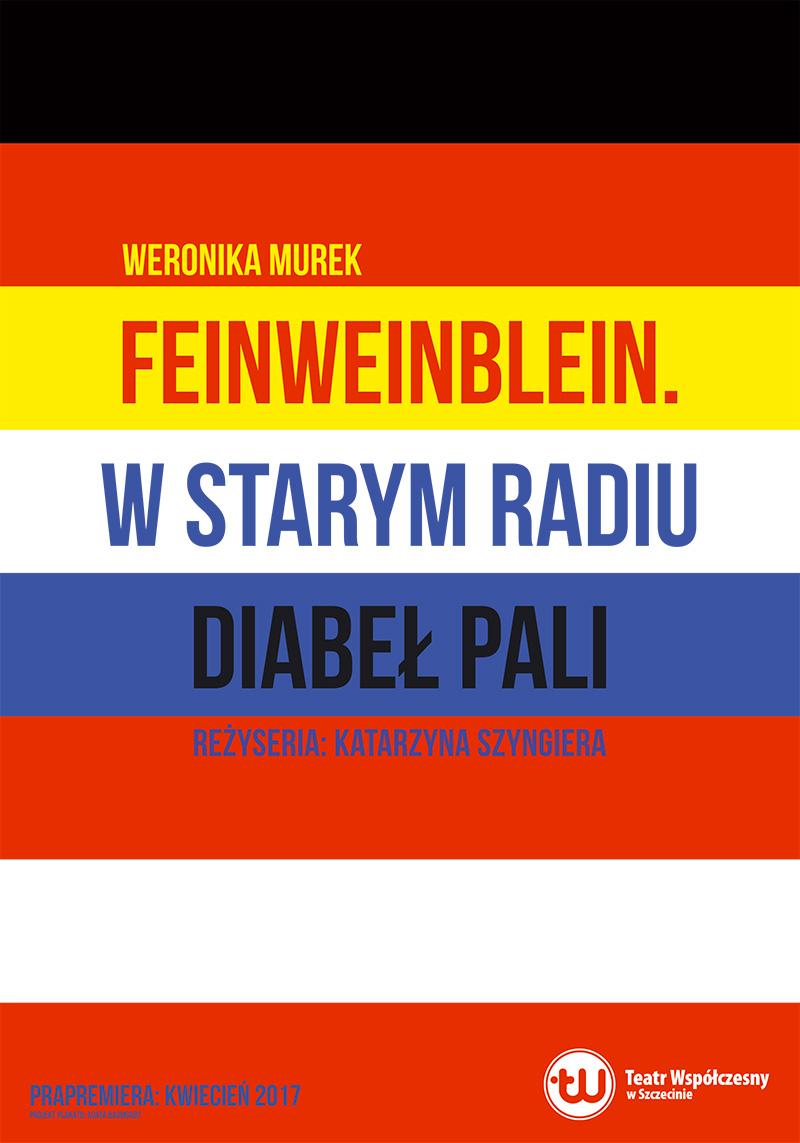 """Weronika Murek, """"Feinweinblain. W starym radiu diabeł pali"""", reż. Katarzyna Szyngiera (źródło: materiały prasowe teatru)"""