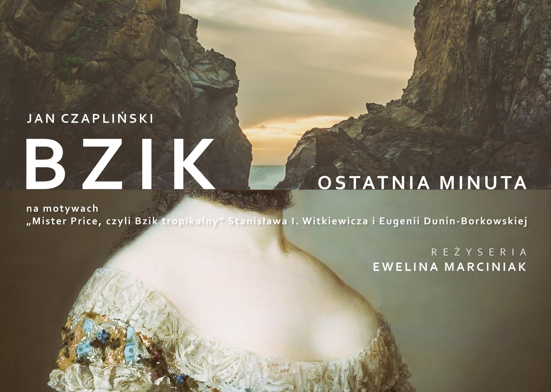 """Jan Czapliński, """"Bzik. Ostatnia minuta"""", reż. Ewelina Marciniak (źródło: materiały prasowe teatru)"""