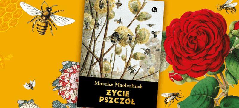 """Maurice Maeterlinck, """"Życie pszczół"""" (źródło: materiały prasowe wydawnictwa)"""