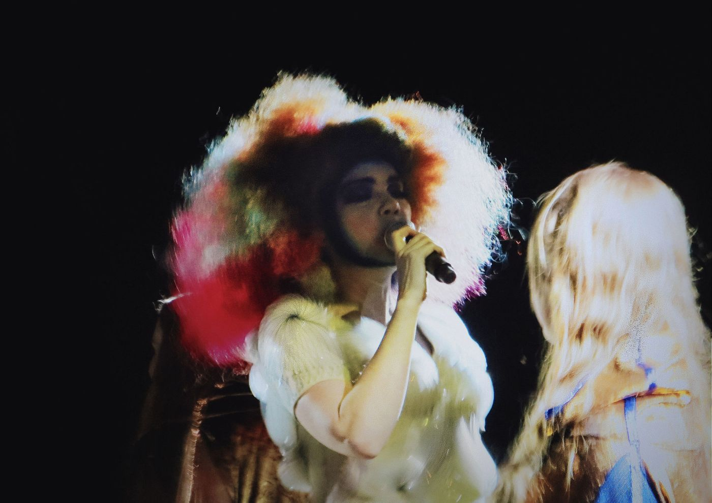 Björk, fot. Rlef89. Na licencji CC BY-SA 2.0 (źródło: Flickr)