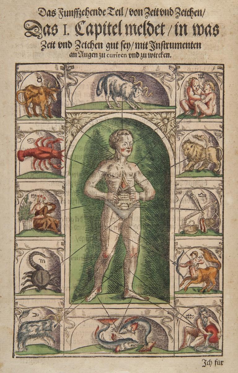 Dwanaście najważniejszych narządów ciała ludzkiego i rządzące nimi konstelacje zodiakalne Kolorowany drzeworyt z pierwszego podręcznika okulistyki G. Bartischa, wydanego w 1583 r. fot. Muzeum Narodowe w Krakowie (źródło: materiały prasowe organizatora)