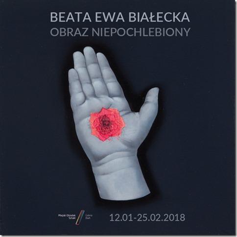 """Beata Ewa Białecka """"Obraz niepochlebiony"""" (źródło: materiały prasowe organizatora)"""